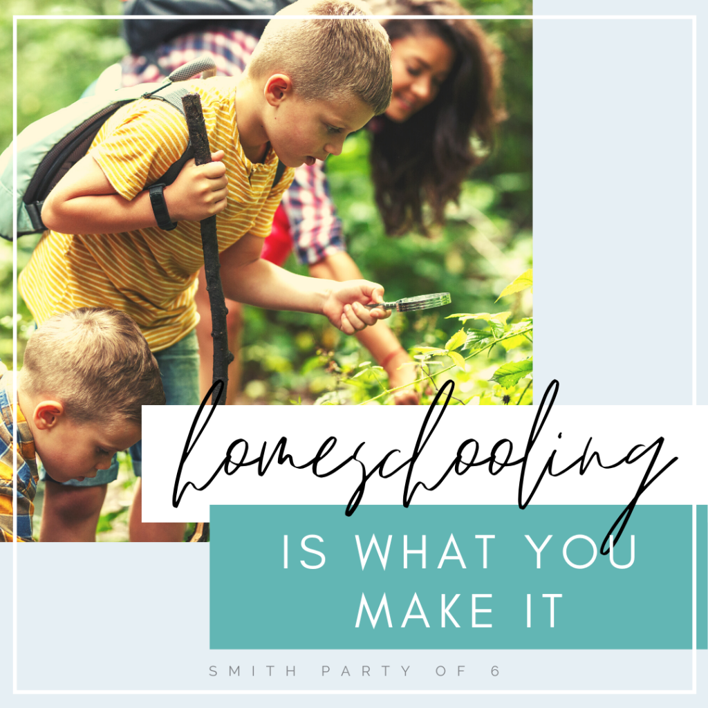 Homeschooling is what you make it.