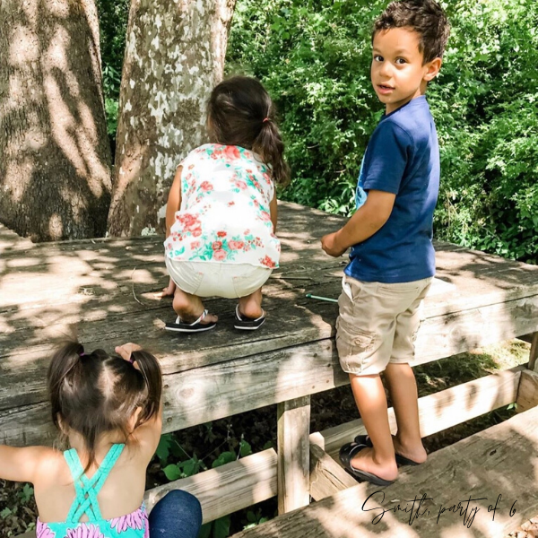 Learning about Nature at the Park
