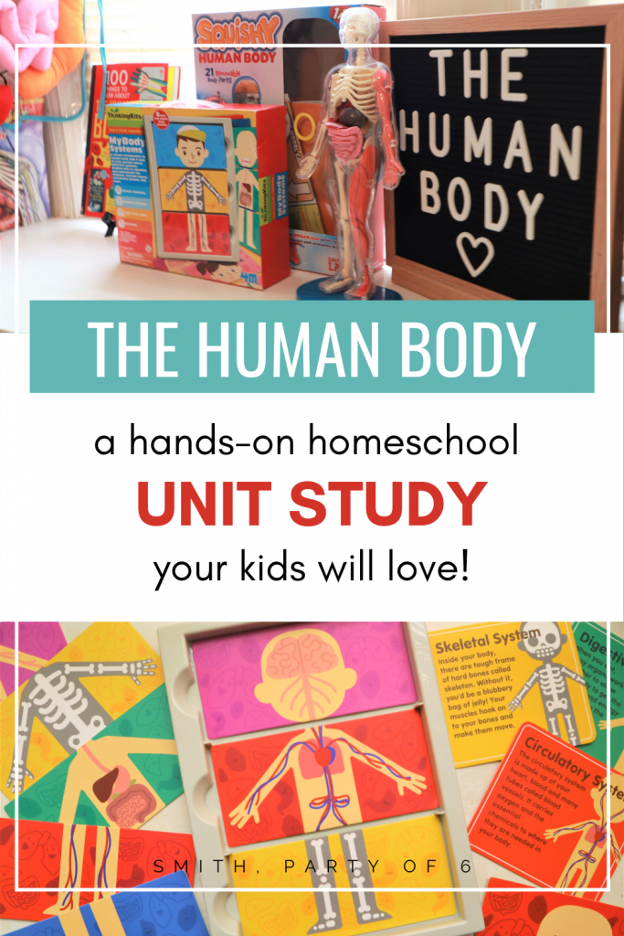 The Human Body | A simple, hands-on unit study your kids will love!